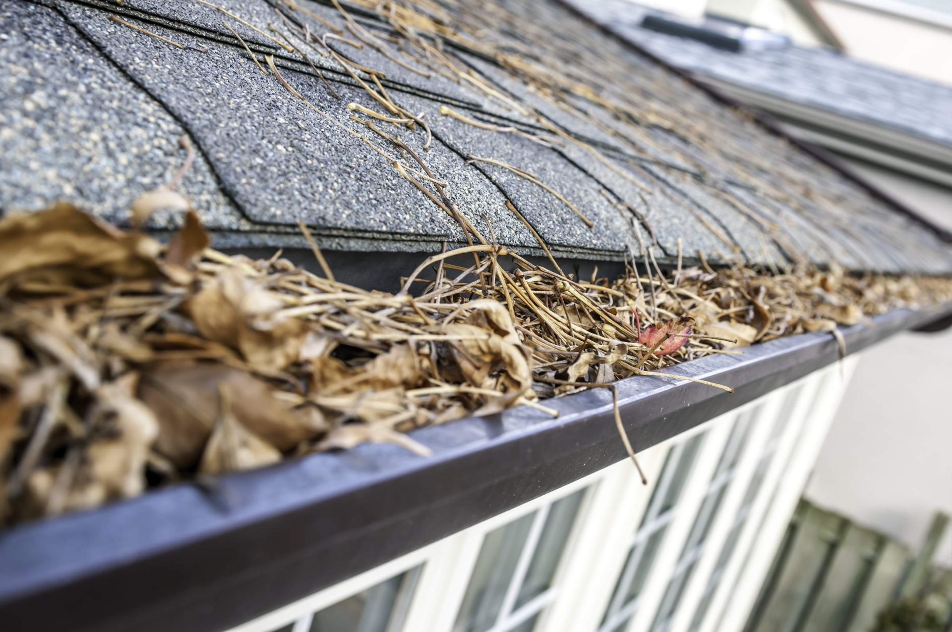 Gutter-Cleaning-Sandy-Spring